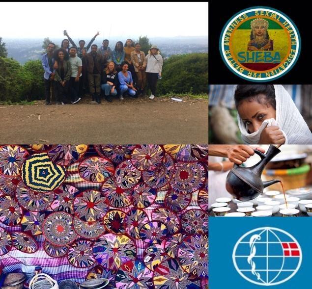 BLIV UNGDOMSLEDER I ETIOPIEN